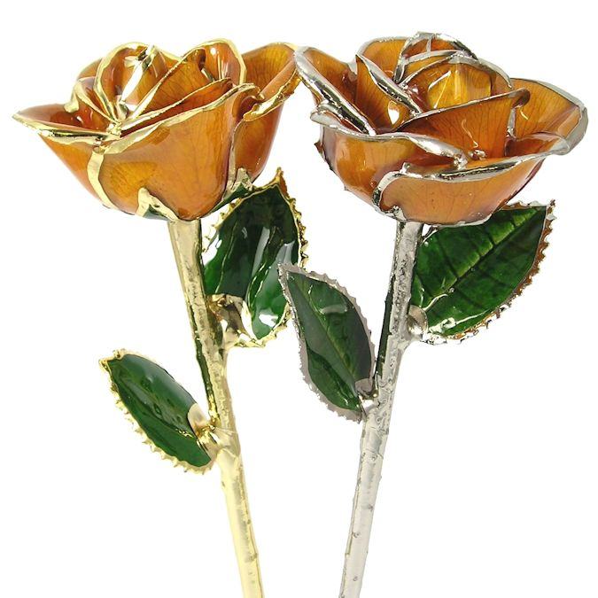 November Birthday Rose Gift: Citrine Orange Rose