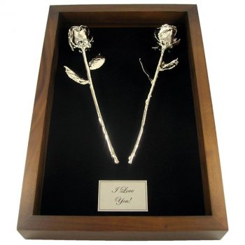 11 Quot Platinum Dipped Roses In 20th Anniversary Shadow Box