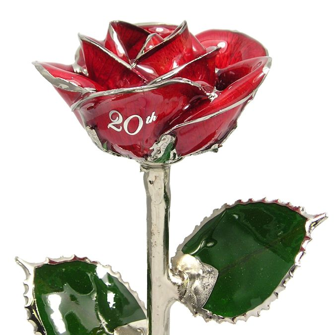 Personalized Rose 20th Anniversary Gift: 11in.