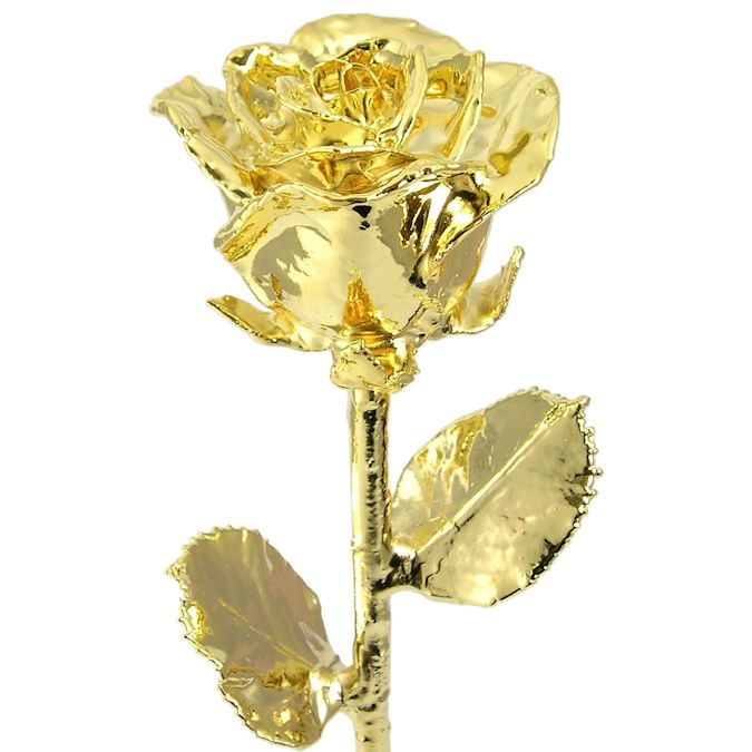 18 Real Rose Dipped In 24k Gold Love Is A Rose