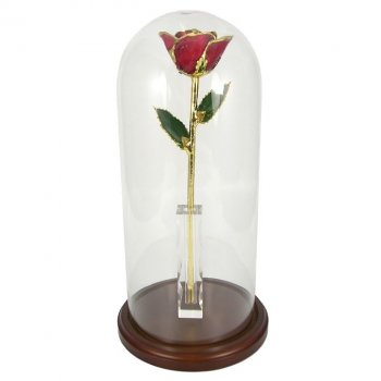 Enchanted 11in. Gold Trimmed Rose