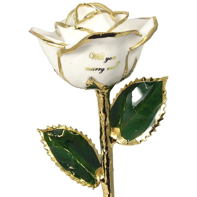 Personalized Preserved Rose: Will You Marry Me?: 11in.