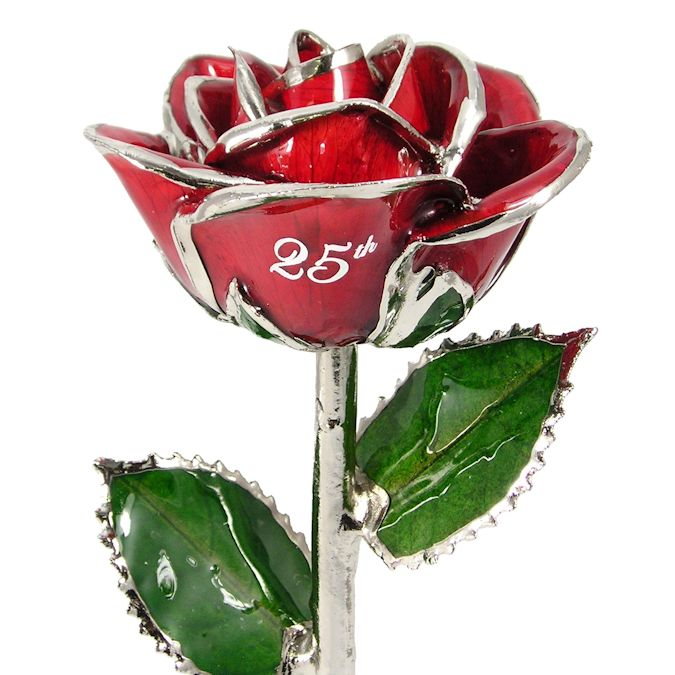 Personalized Rose 25th Anniversary Gift: 11in.