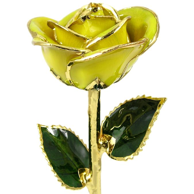 24k Gold Trimmed Rose: 11in. Yellow Rose