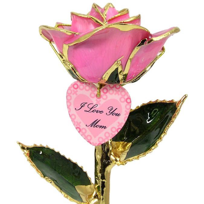 Personalized Mothers Day Gift: Hugs and Kisses Rose: 11in.