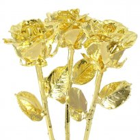 24k Gold Dipped Roses