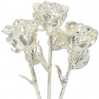 Silver Dipped Roses
