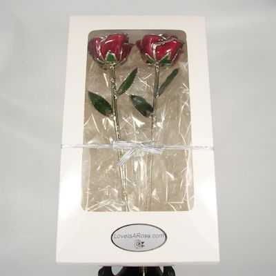 White Window Gift Box 2 Roses